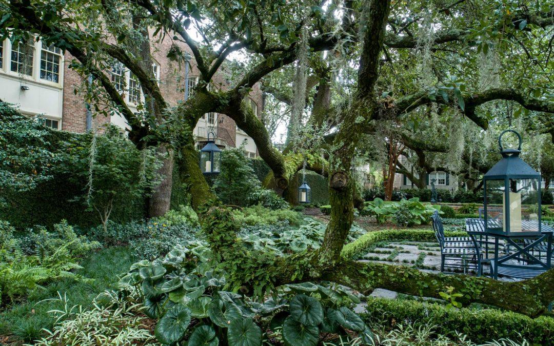 Garden District Retreat